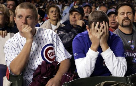 A Letter to the Frustrated Cubs Fan