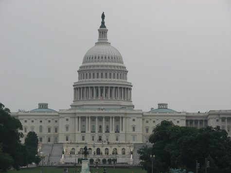 """US Capitol"" by keithreifsnyder is licensed under CC BY 2.0"