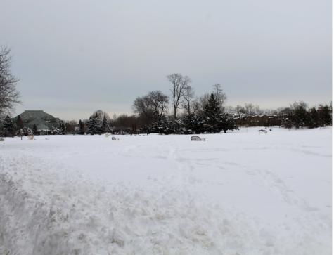 Photo Essay: Chicago Beneath the Snow