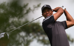 Tiger (Tiger Woods) Documentary Review